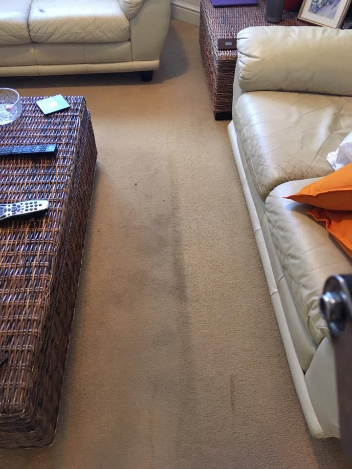 Carpet Cleaners Guildford